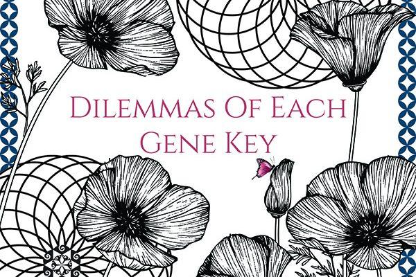 the dilemmas of each gene key